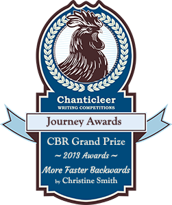 More Faster Backwards: Rebuilding David B - Journey Award Winner from Chanticleer Book Reviews